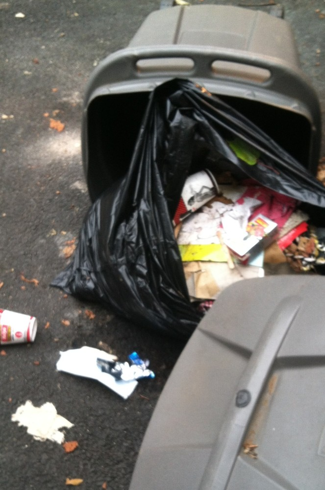 Keeping Raccoons Away From Garbage (1/4)