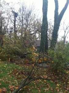 Aftermath of Sandy; Reports From Two New Jersey Towns (2/6)