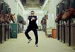 gangnam style stable