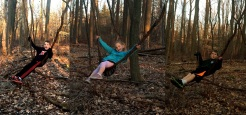 three kids vine swing